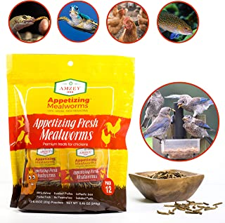 Amzey Fresh Mealworms 1600 Count, for Chicken Feed, Fish Food, Turtle Food, Duck Food, Reptile Food,Mealworms Length 1 Inch, High Protein and Nutrition, No Preservatives, 240gr