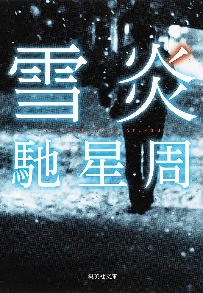 童謡常習者不名誉雪炎 (集英社文庫)