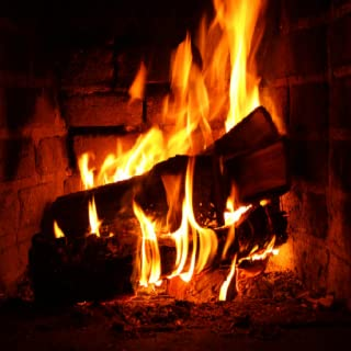 Amazing Fireplaces for Christmas with Music
