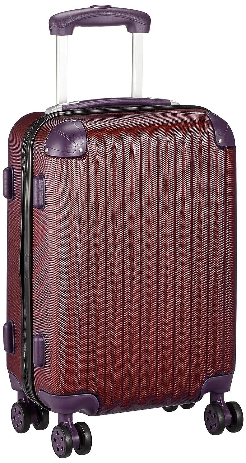 祖母別の対[シフレ] ハードジッパースーツケース [エスケープ] シフレ 1年保証付 保証付 機内持ち込み可 30L 46 cm 3kg
