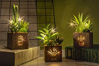 BEGONDIS Set of 3 Artificial Succulents with Led Lights in Wooden Box, Artificial Plants..