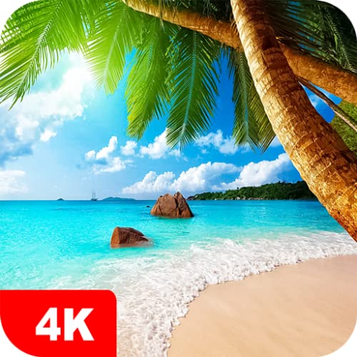 Summer Wallpapers 4K & HD Backgrounds apps