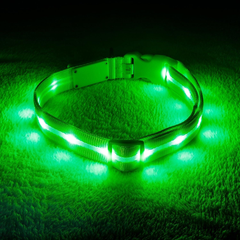 USB wiederaufladbaren mit Wasserdicht blinkendes Licht Blazin Bison Sicherheit F/ührte Hundehalsband