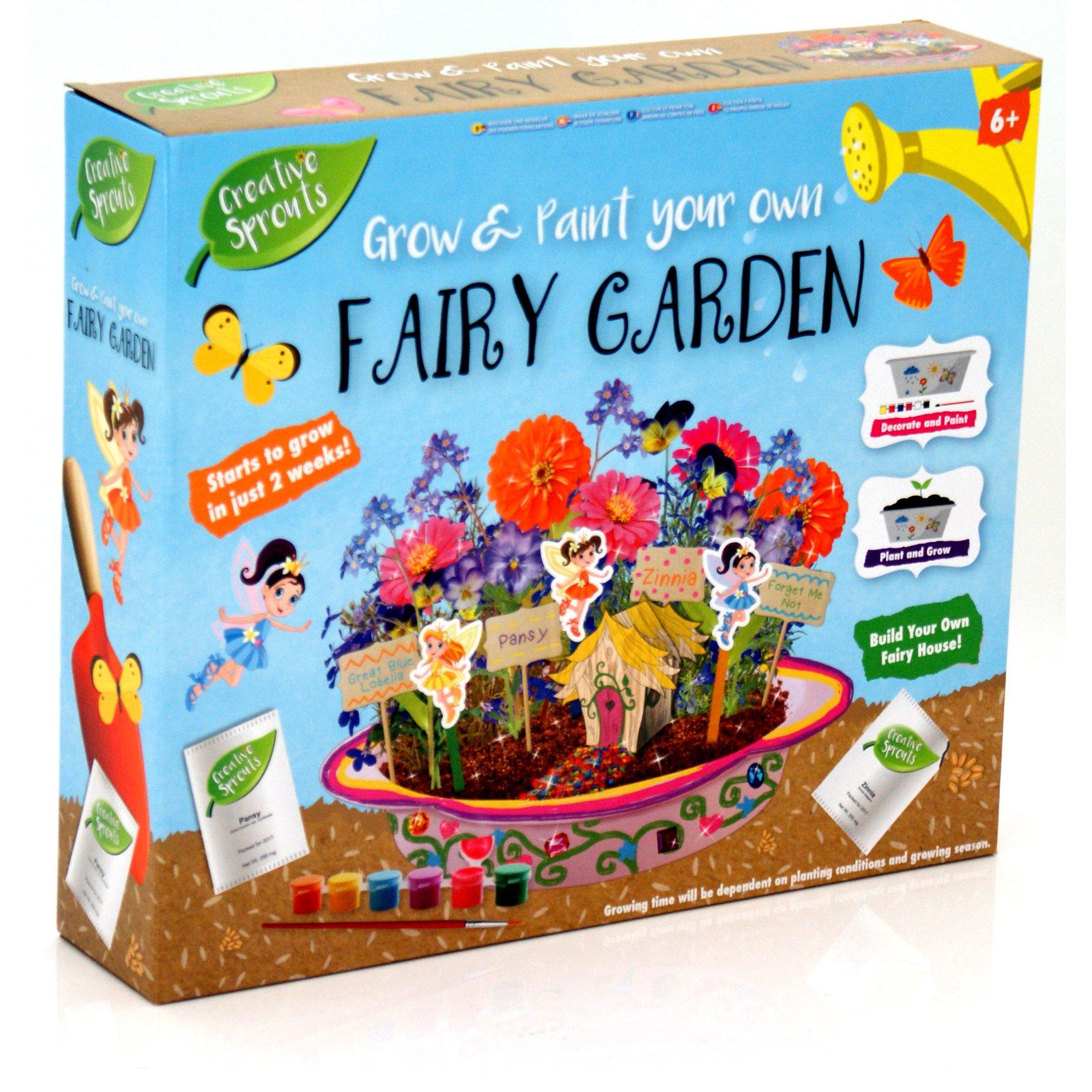 Creative Sprouts - Crecimiento y Pintura para tu Propio jardín de Hadas: Amazon.es: Juguetes y juegos