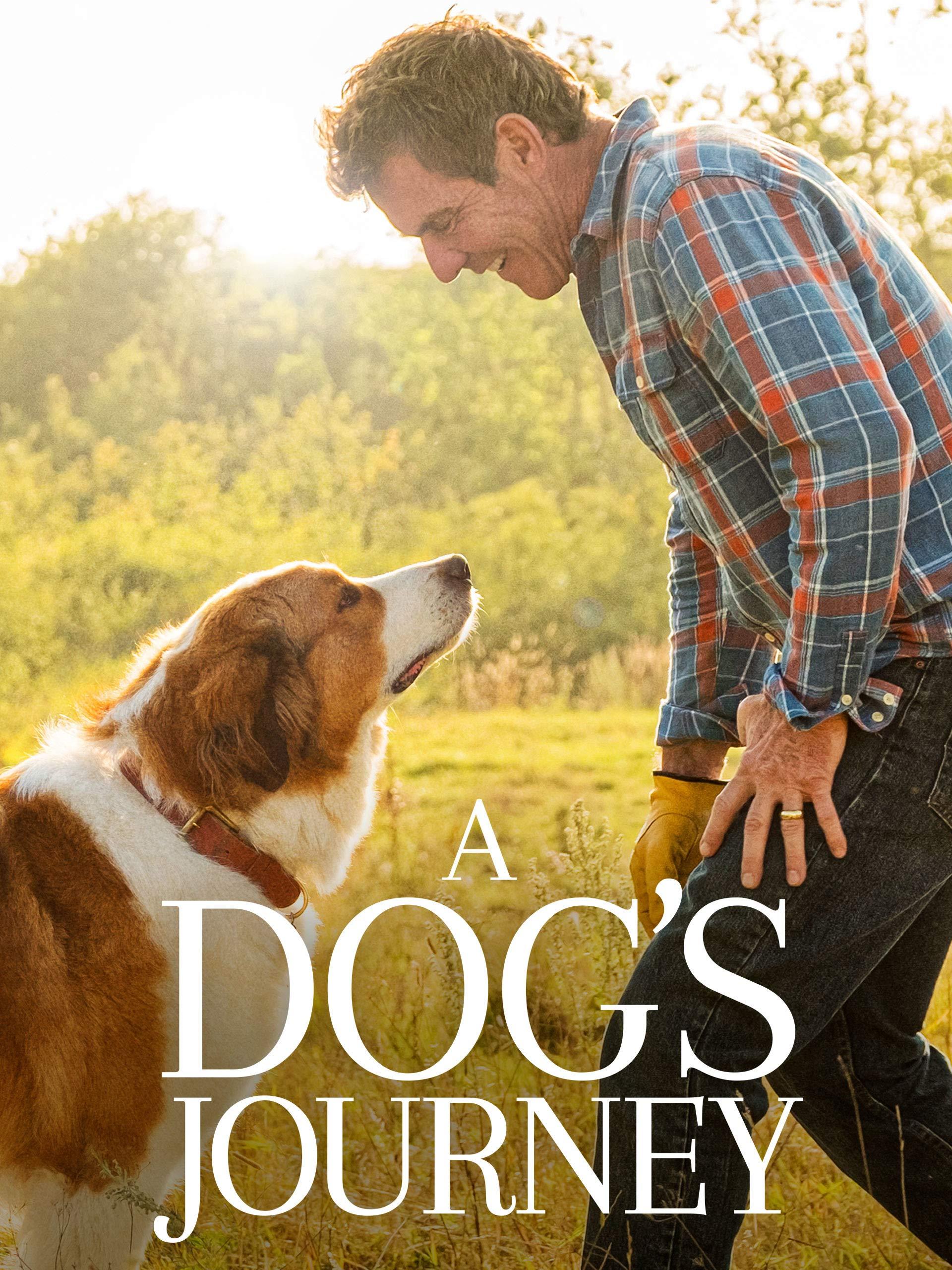 Dogs Journey Marg Helgenberger