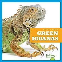 آيغوانا الخضراء (كتب بولفيرغ: عالم التبريد)