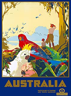 A SLICE IN TIME Australia Galah Cockatoo Birds Vintage Australian Travel Collectible Wall Decor Art Poster Print. Measures 10 x 13.5 inches