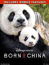 Disneynature: Born in China (With Bonus Content)
