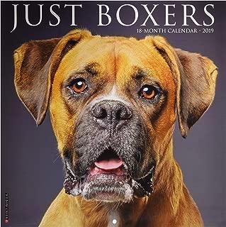 2019 boxer dog calendar