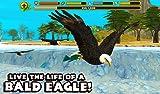 Immagine 1 eagle simulator