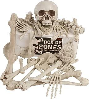 Best styrofoam skeleton bones Reviews
