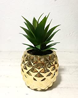 Pretty Home Artificial Potted Succulent 7.8