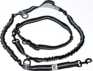 Pet's Go Play Go Run Hands Free Dog Leash - Small-Medium and Large Dogs Puppies to Big Dog, Waist Belt, 2 Handles & 2 Bungees - Great 4 Women, Men, Kids, Boys & Girls; Extra Control for Running & Walk