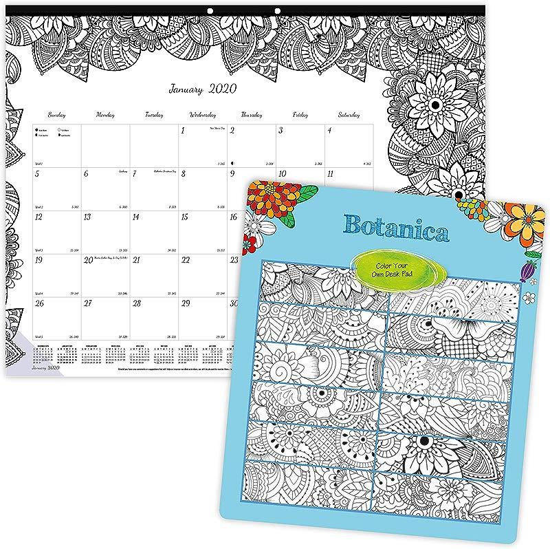 Blueline 2020 DoodlePlan Monthly Coloring Desk Pad Calendar January December Botanica Designs 22 X 17 Inches C2917311 20