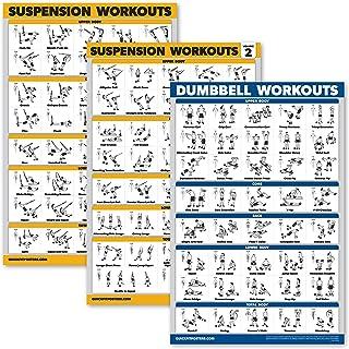 Palace Learning 3 Pack - Suspension Workout Posters - Volume 1 & 2 + Halteroefeningen Poster Set - Set van 3 Workout Charts