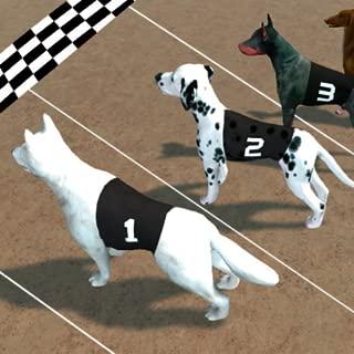 Crazy Dog Race