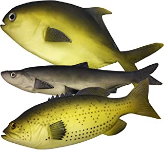 3 Large Artificial Fish- 12 to 16 in - Premium Quality - Realistic Fake Fish - Best Looking Real Fish Perfect for Food Dis...