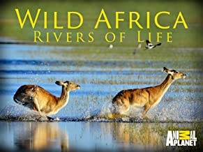 Best wild africa rivers of life Reviews