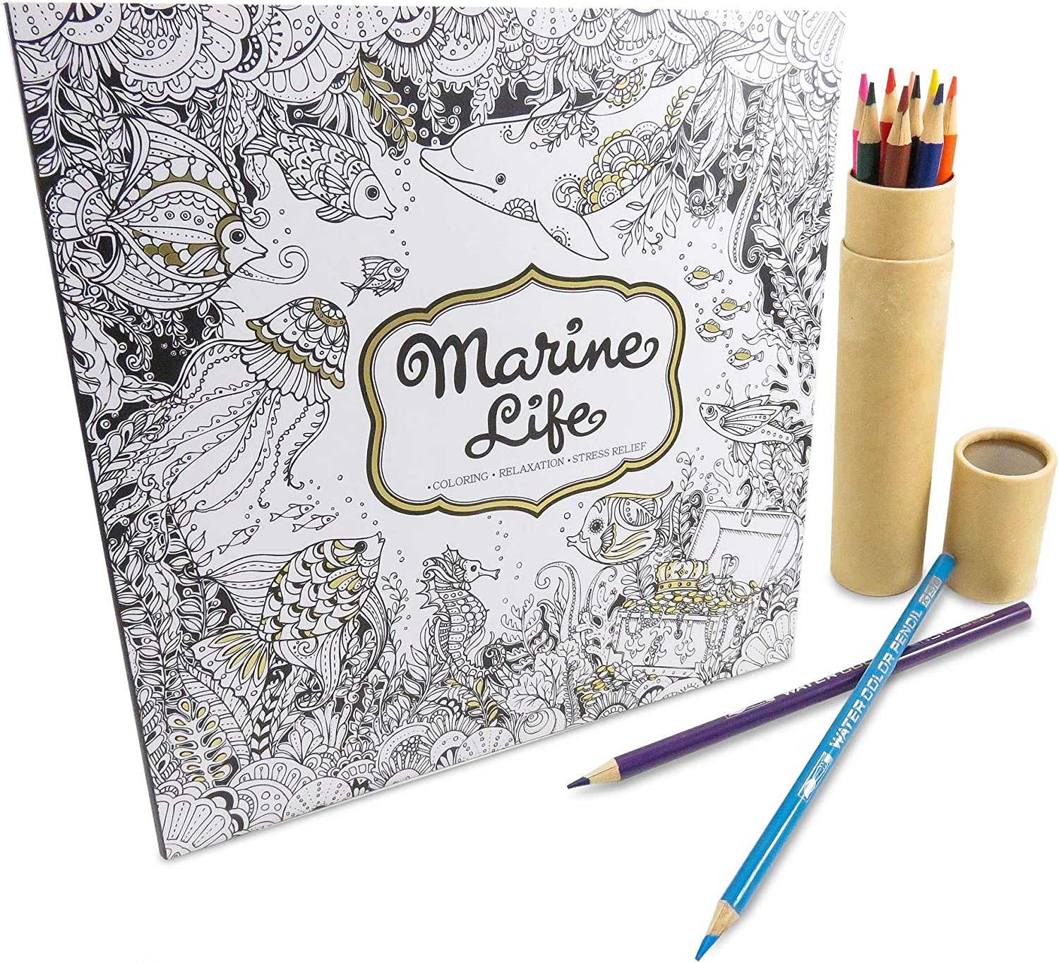 Rainbow colord Pencil Set Art Tools (12) with Marine Life coloring Book 50 Pages - Perfect 13 Piece Stocking Stuffer