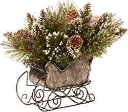 National Tree 10 Inch Glittery Bristle Pine Sleigh with 6 White Tipped Cones (GB3-810-10)