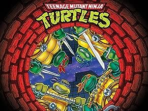 Teenage Mutant Ninja Turtles Season 10: The Complete Final Season