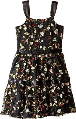 Embroidered Mesh Dress (Little Kids/Big Kids)