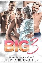 BIG 3: A REVERSE HAREM STEPBROTHER ROMANCE (MULTIPLE LOVE Book 1) (English Edition) Format Kindle