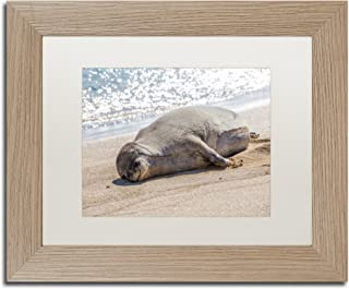 Hawaiian Monk Seal by Pierre Leclerc, White Matte, Birch Frame 11x14-Inch