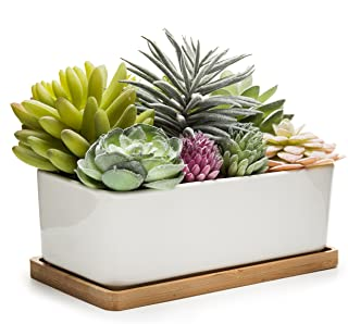 MyGift Potted Artificial Succulents in Ceramic Pot with Bamboo Tray (Assortment 2)