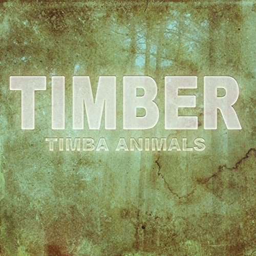 pitbull ft kesha timber video download