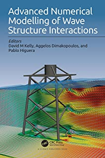 Advanced Numerical Modelling of Wave Structure Interaction