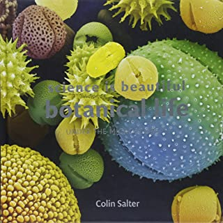 Science Is Beautiful: Botanical Life: Under the Microscope