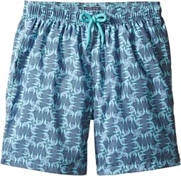 Sashimi Check Fishes Swim Trunk (Big Kids)