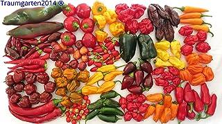 Chili Set 20 Sorten mild bis ultrascharf Weltrekord scharf Carolina Reaper Samen Chilli Saatgut