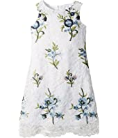 Embroidered Lace Sheath (Toddler/Little Kids)