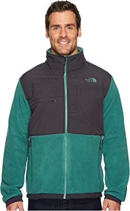 b9a758198829 The north face denali 2 hoodie recycled climbing ivy green rosin ...