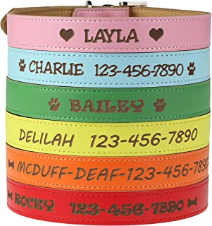 Custom Catch Personalized Dog Collar – Engraved Soft Leather in XS, Small, Medium..