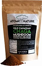 4oz Raw Organic Wild Chaga Mushroom Tea Ground Fine Powder – 100% Natural Hand-Harvested Canadian Forest Chaga Superfood, Healthy Immune System Booster & Antioxidant