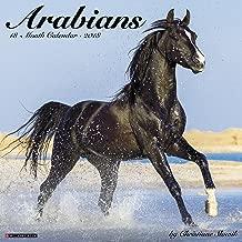 Best arabian horse calendar 2018 Reviews