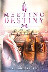 Meeting Destiny Kindle Edition