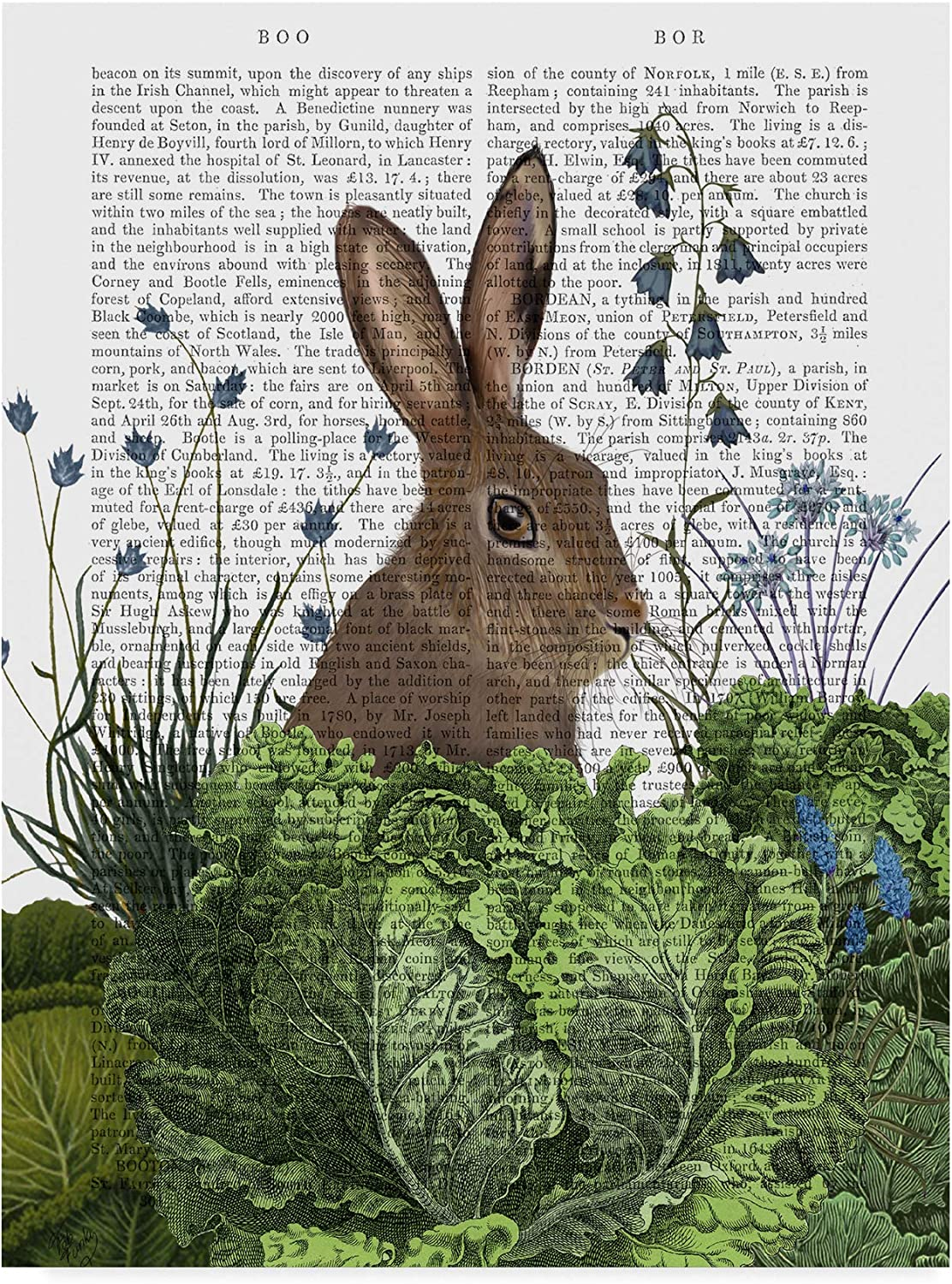 Trademark Fine Art Cabbage Patch Rabbit Text 2 by Fab Funky 2 Wall Decor, 14x19(WAG00196C1419GG)