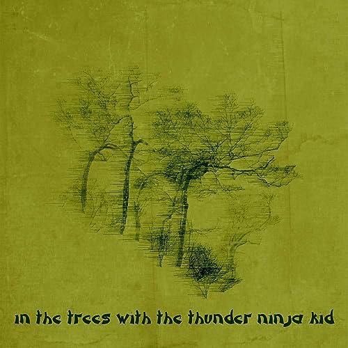 Target Acquisition de Thunder Ninja Kid en Amazon Music ...