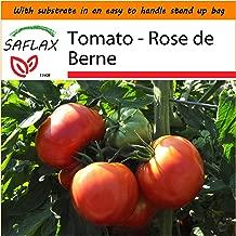 SAFLAX - Garden in the Bag - Tomato - Rose de Berne - 10 seeds - Lycopersicon esculentum