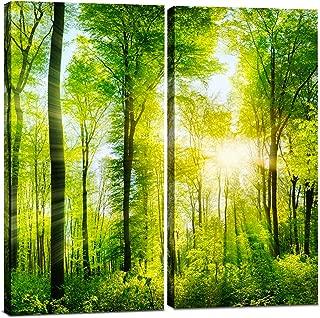 Best split panel photo canvas prints Reviews