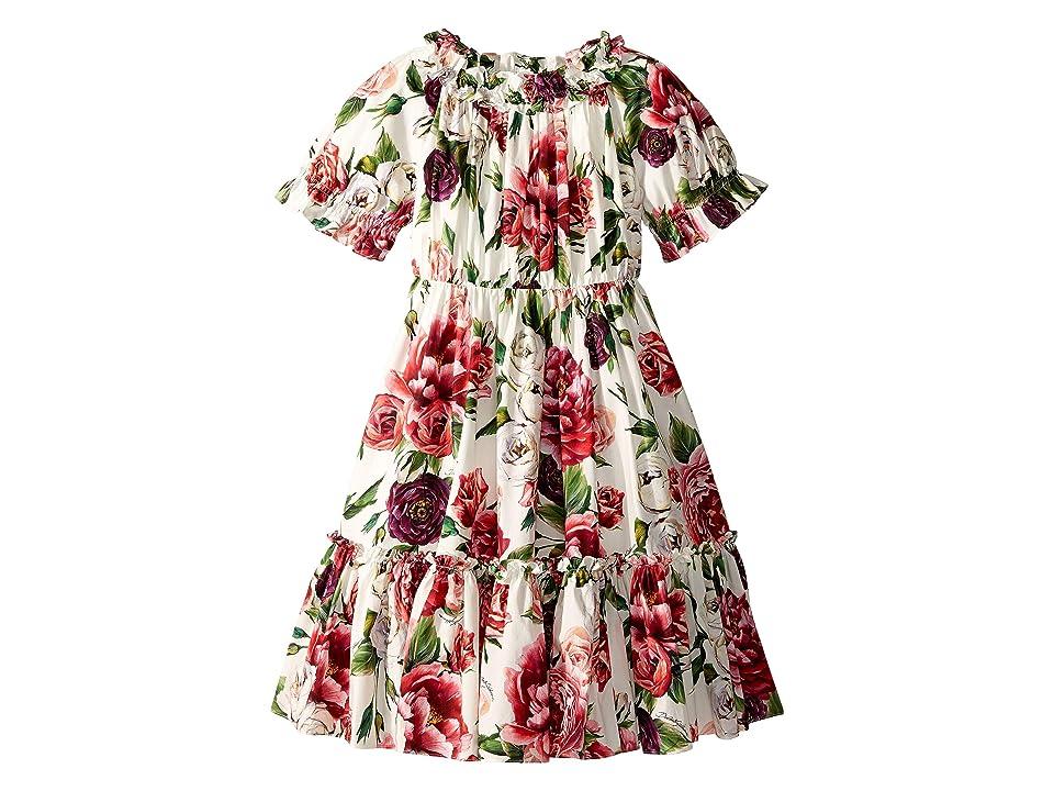 Dolce & Gabbana Kids Poplin Peonie Dress (Big Kids) (Peonie Print) Girl