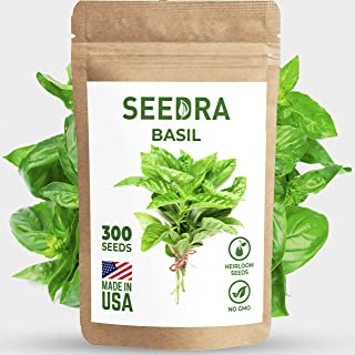 SEEDRA Basil Seeds for Indoor and Outdoor Planting - 300 Seeds/500 mg - Heirloom and Non GMO - Germination Above 90% 1 Pack