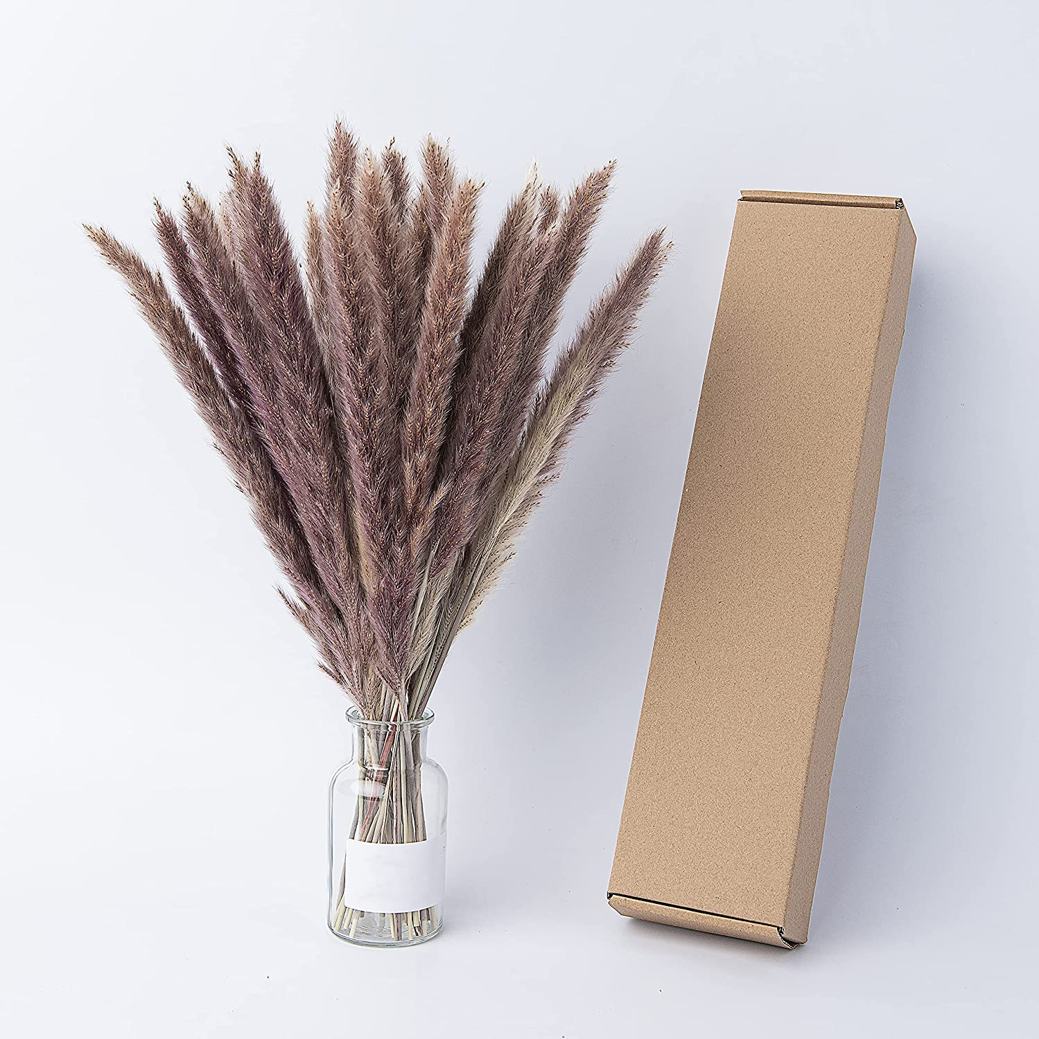 Buy 20 Pcs Natural Dried Pampas Grass, Soft and Fluffy, No Stench ...