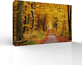 signwin-Canvas Wall Art-Sunshine in The Forest -Canvas Prints Home Artwork Decoration for Living Room,Bedroom - 24x36 inches