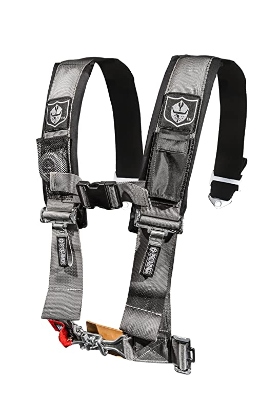 Pro Armor Silver 5-Point Harness with 3