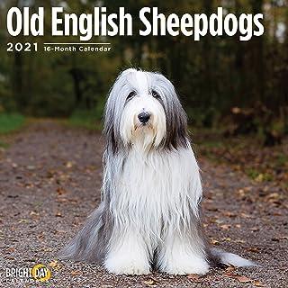 2021 Old English Sheepdogs Wall Calendar by Bright Day, 12 x 12 Inch, Dog Puppy